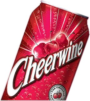 12 pack of CHEERWINE Cans cherry cola pop soft soda-9094